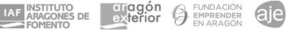 Diseño Web Zaragoza 1